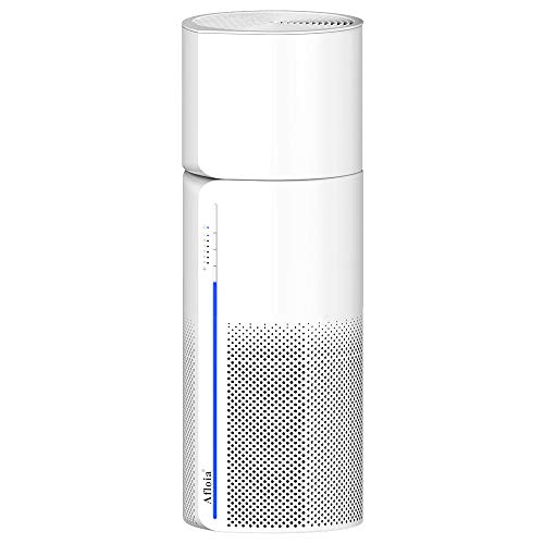 Air Humidifier Purifier for Allergies