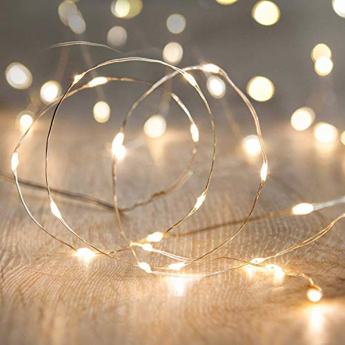 LED Fairy String Lights,ANJAYLIA 10Ft/3M 30leds Firefly String Lights Garden Home Party Wedding Festival Decorations Crafting Battery Operated Lights(Warm White)