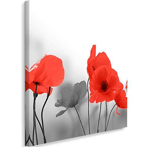 Photo sur Toile Fleurs Tableau Giclée Coquelicots Nature Planres rouge 40x40 cm
