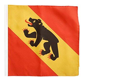 Flagge / Fahne Schweizer Kanton Bern - 30 x 30 cm