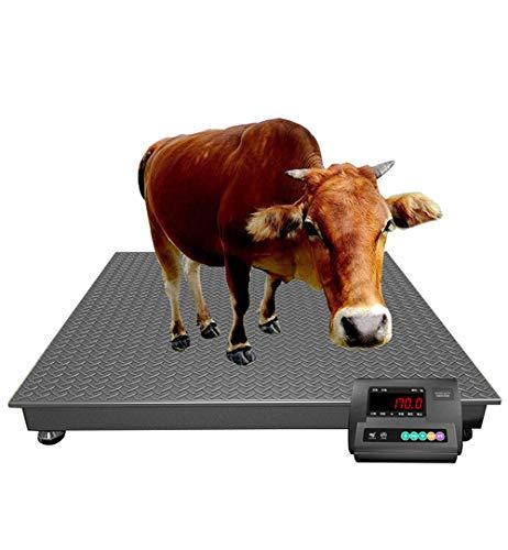 CGOLDENWALL Báscula de ganado de Precison de alta resistencia digital para mascotas veterinarias y veterinarias báscula de plataforma con peso de animales y función de autobloqueo (1000-3000 kg)