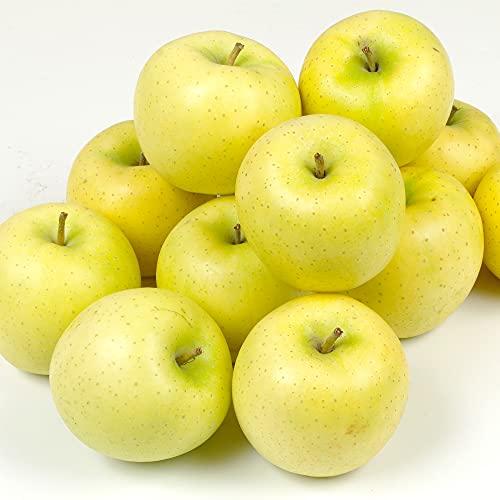 国華園 りんご 青森産 黄王 (10kg) 24〜56玉 ご家庭用 きおう ジューシー 林檎 果物
