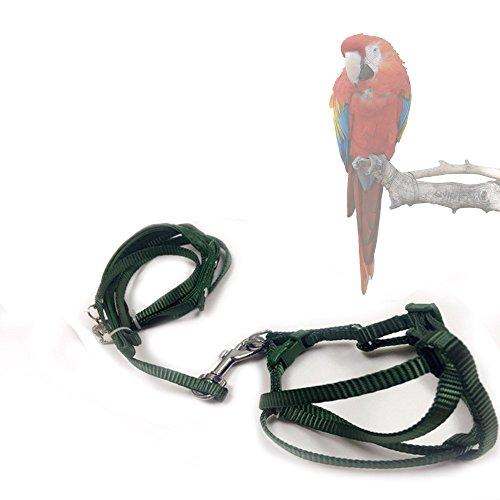 asocea Verstellbarer Haltegurt Feder Vogel Geschirr und Leine für große Rassen Vögel Papageien