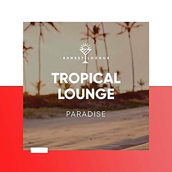 Tropical Lounge Paradise