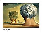 Kunstdruck/Poster: Salvador Dalí Les Trois Sphinx de
