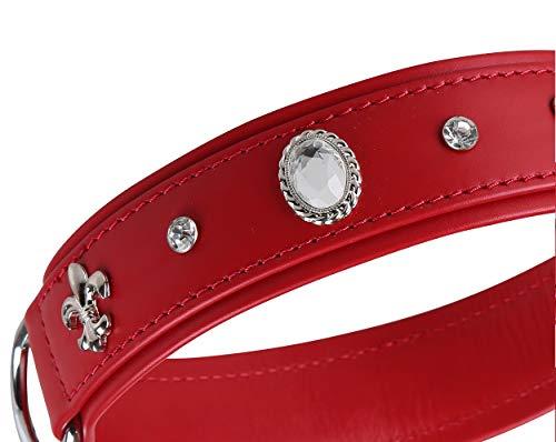 MICHUR Julieta Hundehalsband Leder, Lederhalsband Hund, Halsband, Rot, Leder, mit Lilien,Strasssteinen und großem Kristall, in verschiedenen Größen erhältlich