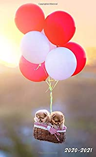 2020-2021: Two-Year Monthly Pocket Planner with Phone Book, Password Log and Notebook. Nifty 2 Year (24 Months) Agenda, Diary, Calendar and Organizer ... of Pomeranians  Puppies in a Hot Air Balloon