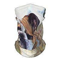 アメリカンブルドッグ多機能多機能帽子ネックゲイターバラクラバヘルメットライナー乗馬フェイスカバー子供用女性男性屋外UV保護