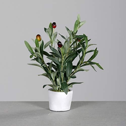 mucplants Hochwertiger künstlicher Olivenbaum Mini Höhe ca. 34cm im grauen Steintopf Olive Kunstpflanze Dekopflanze Topfpflanze