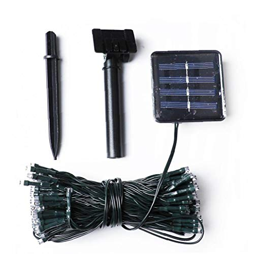 Aardich Solar LED Cadena Luces a Prueba de Agua al Aire Libre Luces de Cadena 24V Secuencia de Hadas 100 Luces de Bulbo Decorativo para el hogar Fiesta de la Boda 12M
