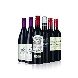 Argentinian Malbec Red Wine - 6 Bottles (75cl) - Laithwaites Wine
