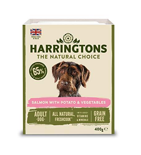 HARRINGTONS Harrington's Nassfutter Lachs und Kartoffel mit Gemüse, 3200 g