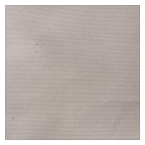 WHAIYAO Lona Impermeable Resistente Carpa para Camping Cubierta De Lona para Camión Techos Jardín Mueble, 6 Colores, 12 Tamaños (Color : White, Size : 5x5M)