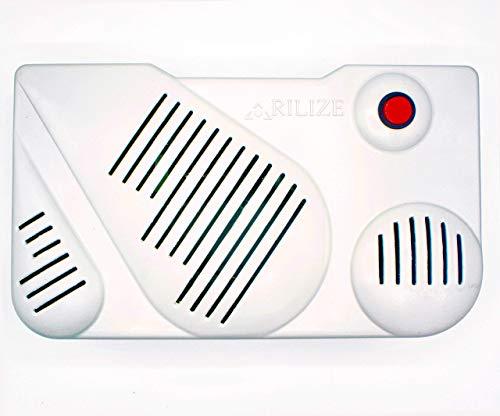 Ozone Rilize Generator luchtreiniger, ozononisator voor milieu en water, draagbare ozon-sterilisator zonder afval in huis, kantoor, restaurant, hotel. Laag stroomverbruik.