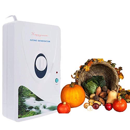 Generatore di Ozono Domestic 600 mg/h, Ozonizzatore Acqua Timer Digitale Portatile Macchina di Disintossicazione per frutta verdura carne Hydro acqua dolce Rad-Timer - 1-60 min