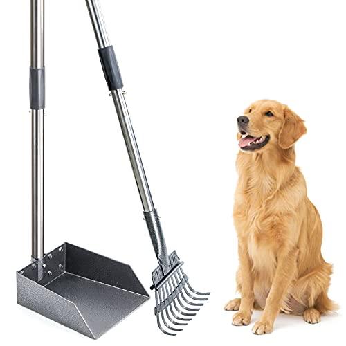Recogedor Juego de pala para excrementos de perro Juego de rastrillo de bandeja de mango largo Pala de caca para desechos de mascotas