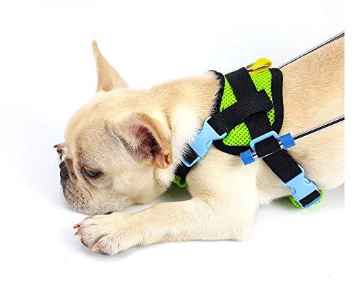 Carrito para perros, adecuado para la práctica de mascotas, rehabilitación, lesiones asistidas,...