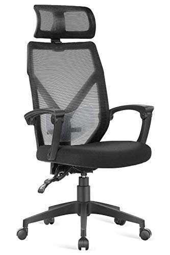 Dripex Ergonomic Office Chair, 140° Adjustable Desk Chair,...