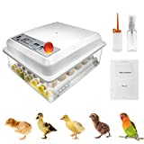 Safego Egg Incubator for Hatching Eggs, Digital Mini Incubator with Automatic Turner and Egg Candler Tester for Hatching Chicken Duck Quail Bird Eggs (16 Eggs)