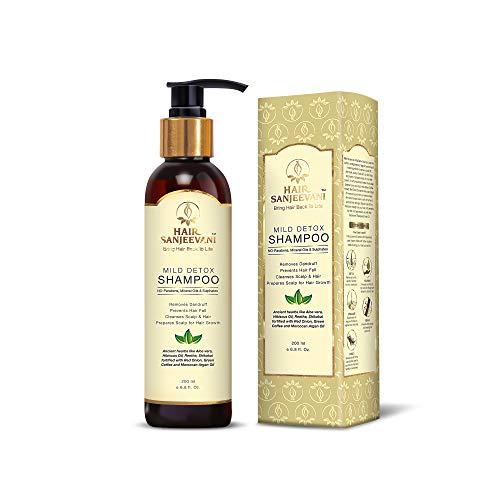 Hair Sanjeevani Sulphate-Free Mild Shampoo To Detox, Repair Damage, Balance Scalp with Ancient Vedic,Modern Herbs- Onion Oil, Coffee,Hibiscus, Bhringaraj, Amla, Shikakai & More (No SLS & SLES) - 200mL