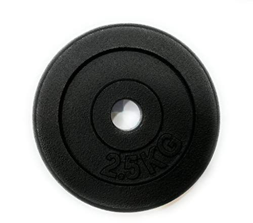 Special Disco in Ghisa 2.5KG Foro 25mm