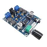 ARCELI XH-M312 M312 TPA3118D2 DC 12V 24V 28V Sortie 3A 45W x 2 Edition numérique Module de Carte d'amplificateur Audio Basse consommation