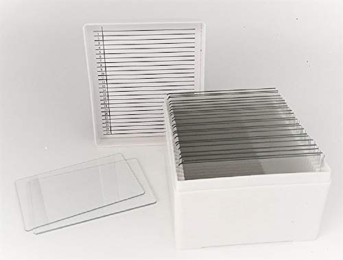 Large 3' x 2' Glass Microscope Slides in Storage Case, 25 Count