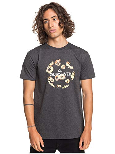 Quiksilver Summers End-T-Shirt pour Homme, Charcoal Heather, FR : M (Taille Fabricant : M)
