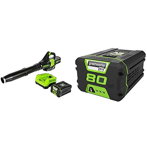 Greenworks BL80L2510 80V Jet Electric Leaf Blower, 2.5Ah Battery and Charger Included & PRO 80V 2.0 AH Lithium Ion Battery GBA80200