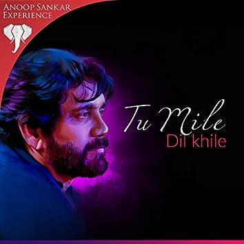 Tu Mile Dil Khile (feat. Ramu Raj)