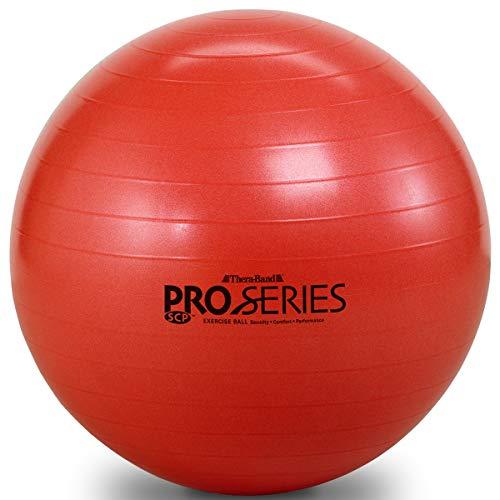 D&M エクササイズボール 直径55cm #SDS-55 レッド