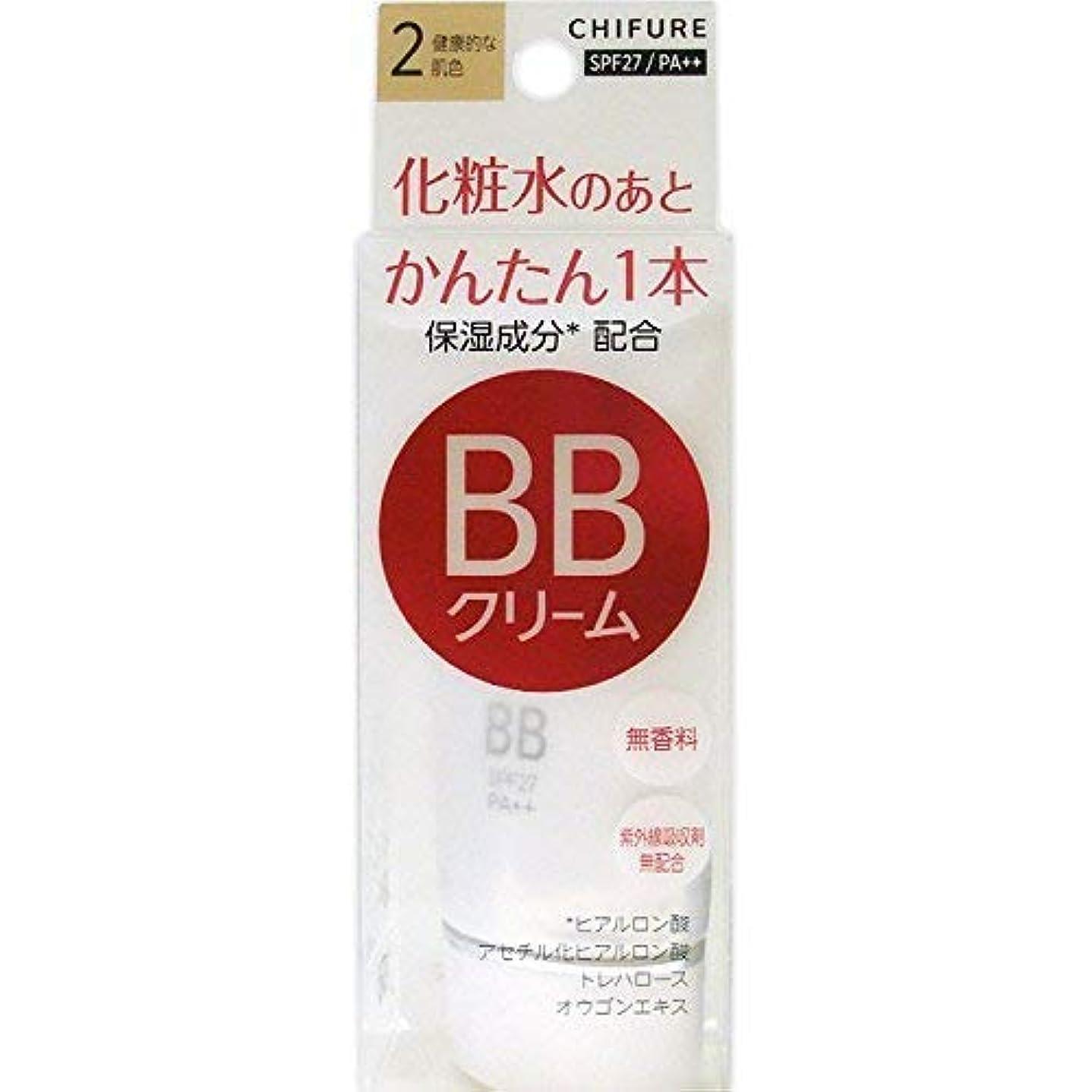 パックグリーンランド冗談でちふれ化粧品 BB クリーム 2 健康的な肌色 BBクリーム 2