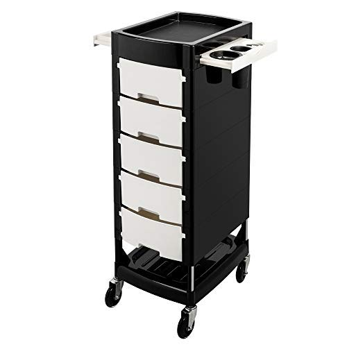 Mefeir Beauty Salon Trolley with 5 ABS Drawers, One Metal Holder, Rolling Wheels for Stylist Hairdresser, SPA Furniture Hair Styling Station Coloring Storage Cart