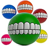 SLR Brands Balls for Dogs - The Squeaky Toys for Dogs Collection   Perfect Cute...
