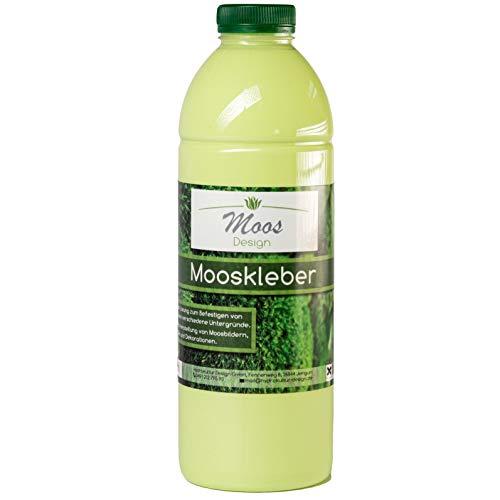 """Bastelkleber\""""Moss-Glue\"""" Moosbilder Do-It-Yourself Mooskleber zum Moosbilder selber machen günstig kaufen Osterdeko Pflanzenbilder Bastelkleber (1 Liter)"""
