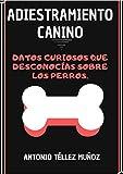 ADIESTRAMIENTO CANINO: 75 DATOS CURIOSOS QUE DESCONOCÍAS SOBRE LOS PERROS.