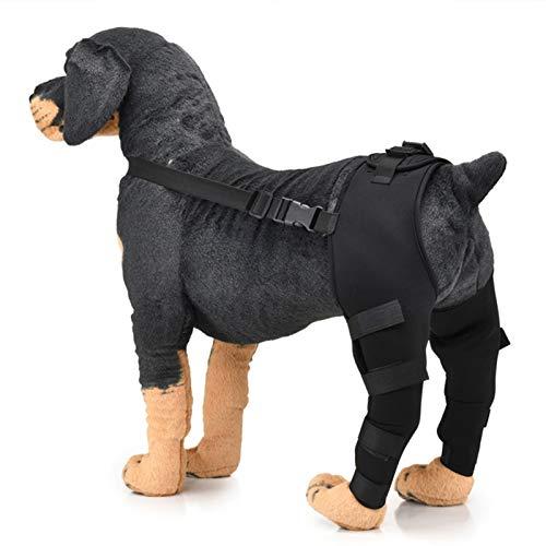 1 Par De Aparatos Ortopédicos para Las Patas Traseras Y Mangas De Soporte para Perros, Aparatos Ortopédicos para Las Patas Traseras para Perros, Ayuda para Caminar Posoperatoria para Perros(L, Black)