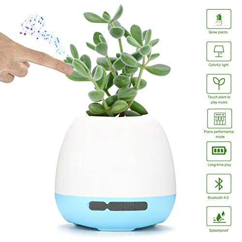 Music Plant Pot, OHNICE Wireless Bluetooth Speakers 360°Surround Sound Music Smart Flower Pot, 7-Color LED Night Light Lamp by Touching Plant for Bedroom Home Office As Gift (Blue (4.13in X 4.13in))