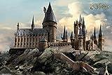 Harry Potter FP4759 Poster, mehrfarbig, 61x91.5cm