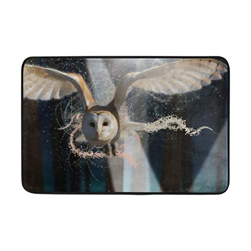 Dragon.S Non Slip Magic Owl Indoor Mat for Wet Shoes,Soft Polyester Floor Mat Doormat Super Absorbs Water,23.6x15.7 Inch Home Decoration Area Rug
