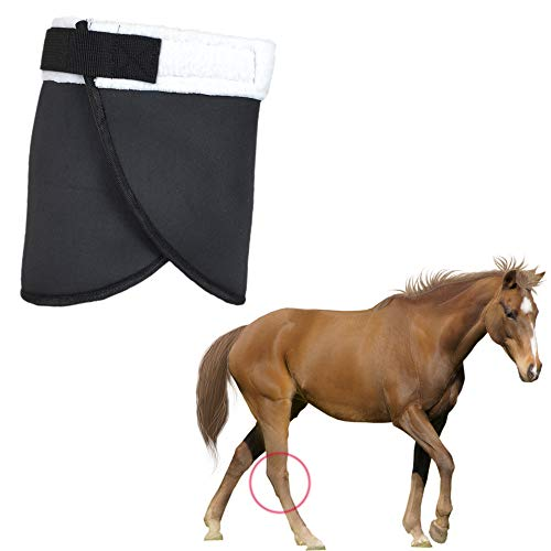 YUYUSO Hock Shield Protector for Horse Single Hock Wrap Neoprene Horse Hock Support Hock Boot