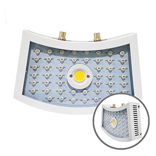 LED Grow Light 1000W Pflanzenlichter Für Zimmerpflanzen, 48 LED-Lampenperlen, Dimmbare Doppelkopf-Pflanzenlampe, Für Pflanzen Von Der Keimung über Setzlinge Bis Zur Blüte Bis Zur Frucht