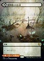 【FOIL】マジックザギャザリング KHM JP 291 荒廃踏みの小道/灼熱踏みの小道 (日本語版 レア) カルドハイム