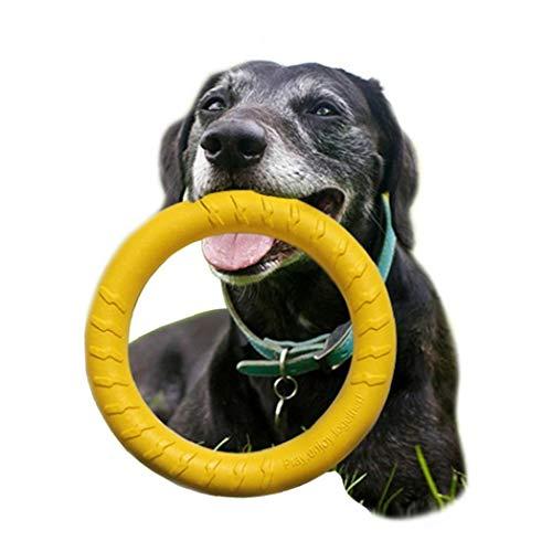 Payxuan Disco Volador para Perro de Goma,Violeta /Ø 15cm