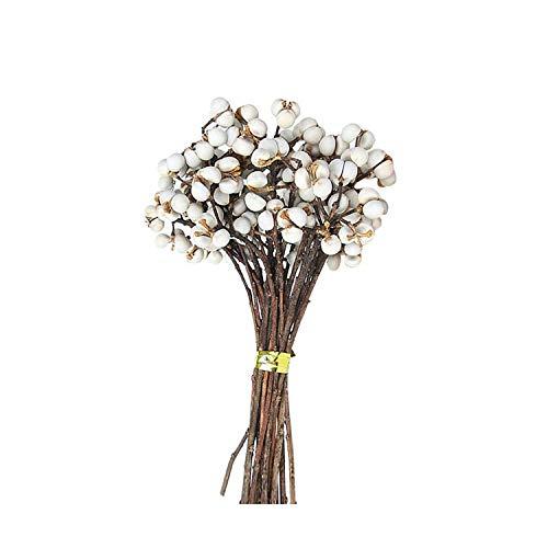 Fun-Bouquet di Fiori Naturali conservati Fiori secchi delicati Bouquet di Fiori eterni Accessori fotografici