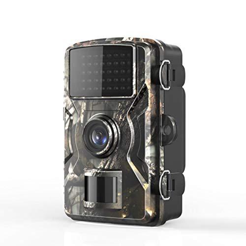 ZJJ Mini cámara de Vida Silvestre 12MP 1080p HD Detección de Infrarrojos de detección de cámara con visión Nocturna, Adecuado para la Caza al Aire Libre o monitoreo de Seguridad doméstica