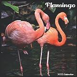 Flamingo Calendar 2022: Official Flamingos Birds Calendar 2022, 16 Month Calendar 2022