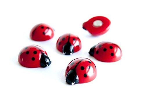 6 x Coccinella Calamite frigo Magneti per lavagne - Gioco calamite per bambini - 6 pezzi - Magneti animali per Frigorifero Lavagna magnetica/bianca Giochi Bambini Decorazione Casa e Ufficio