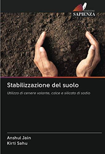 Stabilizzazione del suolo: Utilizzo di cenere volante, calce e silicato di sodio