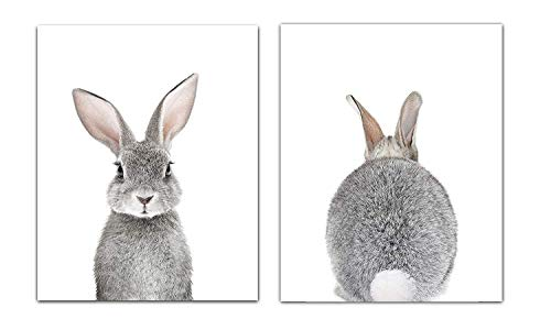 Baby Nursery Wall Decor Art - Set of 2 (UNFRAMED) Wall Artwork 8x10 Baby Bunny Front and Back Photographic Print